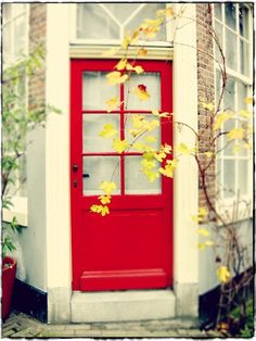 The Red Door.  Many kinds of doors have specific names, depending on their purpose. The most common variety of door is the single-leaf door which consists of a single rigid panel that fills the doorway.