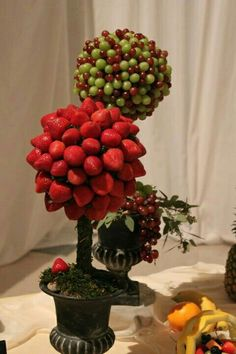 topiary with Fruit Party Trays, Snacks Für Party, Parties Food, Party Buffet, Iftar, Deco Fruit, Deco Buffet, Fruit Creations, Fruit Decorations