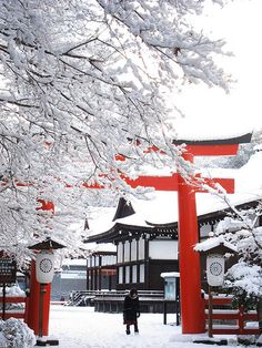 White snow and red tori in Kyoto
