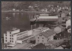 Hammerfest Mittet