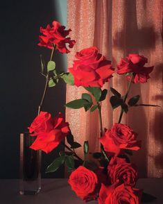 Flower Aesthetic, Red Aesthetic, Aesthetic Pictures, Art Background, Pretty Flowers, Aesthetic Wallpapers, Pretty Pictures, Flower Power, Red Roses