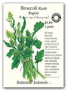 Broccoli Raab Rapini Certified Organic Seed by Botanical Interests. $1.79. Certified organic seed. Popular ingredient in gourmet cooking. Broccoli raab is an Italian vegetable. Produces tender shoots with a spicy, broccoli flavor. Brassica rapa. Broccoli Raab Rapini is an Italian vegetable often used in gourmet cooking. Delicious spicy flavor is packed in tender shoots (somewhat resembling asparagus). Great in salads or when steamed, this easy to grow vegetable can be grown for ...