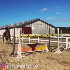 HORSE (@instahorse.co) • Instagram photos and videos Horses, Photo And Video, Park, Videos, Photos, Instagram, Pictures, Parks, Horse