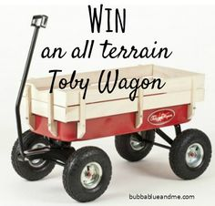 I'd love a Toby Wagon - great for home, garden or out camping or at festivals. I've got one to giveaway on the blog.
