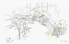 Image 12 of 15 from gallery of Kengo Kuma Designs Cultural Village for Portland Japanese Garden. Photograph by Kengo Kuma & Associates Japanese Garden Plants, Japanese Garden Landscape, Portland Japanese Garden, Japanese Garden Design, Japanese Flowers, Japanese Pics, Japanese Gardens, Kengo Kuma, Garden Pictures