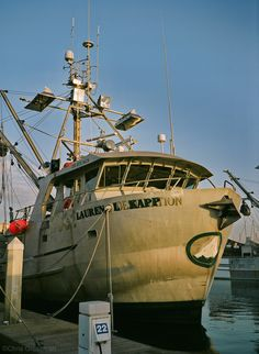 Image result for commercial squid fishing california
