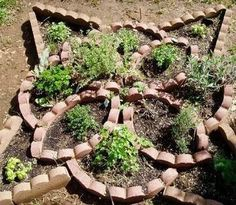 knot garden with preformed concrete edging. @ its-a-green-life