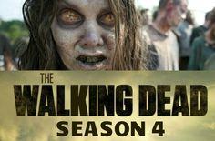 http://zombobszombiemoviereviews.blogspot.com/2013/04/walking-deads-kirkman-talks-new.html