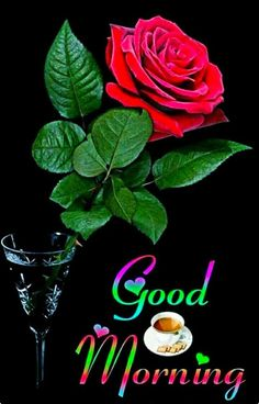 Good Morning Coffee Gif, Good Morning Happy Thursday, Good Morning Happy Sunday, Good Morning Cards, Good Morning Greetings, Good Morning Good Night, Morning Post, Happy Monday, Good Morning Flowers Rose