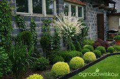 Atelier ogrodowe...