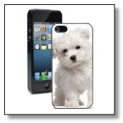 Dog iphone case http://maltese-care.com/blog/dog-iphone-case