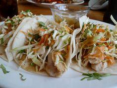 West Indies Chicken Tacos, Mango Cafe,  Isla Mujeres, Mexico