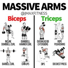 Here are the best exercises for hitting your biceps and triceps.These exercises are proven to have the highest peak contraction of your arms, which can lead to the most growth.I made the big mistake, in the past, of only training my arms once per week. Big Biceps Workout, Arm Workout Men, Bicep And Tricep Workout, Gym Workout Tips, Biceps And Triceps, Back And Biceps, Weight Training Workouts, Dumbbell Workout, Fitness Workouts