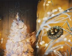 Winter Wedding decor ideas  Nashville, Tennessee  Ariel Renae Photography