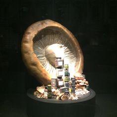 "FORTNUM & MASON,London, UK, ""The Mushroom"", photo by Mes Vitrines, pinned by Ton van der Veer"