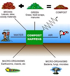 Composting- The science of composting: It virtually costs nothing and doesn't damage your vegetation like harmful chemicals