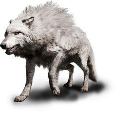 Far Cry Primal - Animals & Beast Mastery Far Cry Primal, Primal Game, Savage Animals, Angel Warrior, Dire Wolf, Extinct Animals, Prehistoric Creatures, Fauna, Creature Design