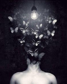 Vivo com borboletas na cabeça! Dani Cabo