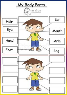 22 Best preschool themes worksheets images in 2018