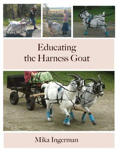 Educating the Harness Goat training book in Sporting Goods, Outdoor Sports, Equestrian   eBay
