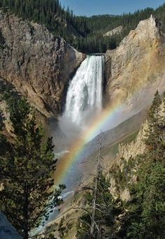 The Grand Canyon of the Yellowstone in Yellowstone National Park (Courtesy of Xanterra Parks & Resorts® in Yellowstone)