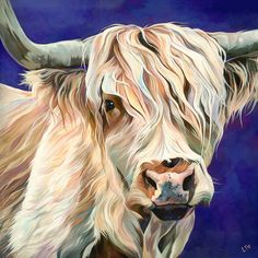 Contemporary cow art for the home. Lauren Terry specialises in fun pictures of all breeds of cattle. From Highland Bulls, to friesian Calfs, you will find the cow artwork just for you. Cow Paintings On Canvas, Cow Canvas, Animal Paintings, Animal Drawings, Realistic Drawings Of Animals, House Paintings, Highland Cow Painting, Highland Cow Art, Highland Cattle