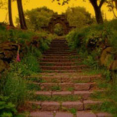 Beautiful overgrown path to the garden ruins of an abandoned estate in Lancashire, England.