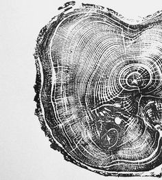 Tree Ring Pine Tree Print | This simple wood print was printed by hand from a cross-sectio... | Posters
