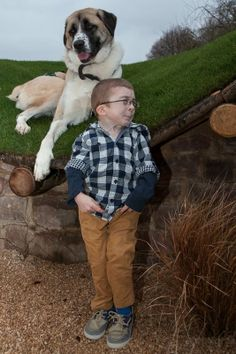 1000 images about haatchi amp little b on pinterest the
