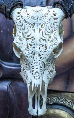 Hand Carved Dragon Horse Skull Real Mule/ Animal Skull Bone + Teeth/ Taxidermy