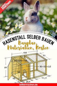 7 Ideas De Corral Para Conejos Casa De Conejitos Conejos Jaulas De Conejos