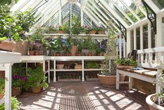 Image result for greenhouse interiors