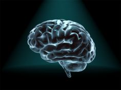 University of Washington researchers recently used a direct brain-to-brain connection to enable pairs of participants to play a question-and-answer game by transmitting signals from one brain to the other over the Internet. The experiment, detailed today in PLOS ONE, is thought to be the first to show that two brains can be directly linked to allow one person to accurately guess what's on another person's mind.