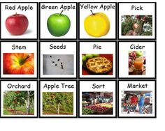 Apple Words/Pictures for writing center