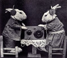 I wonder what they are listening to?