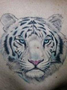 white tiger tattoo tum...