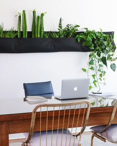 Bringing the outdoors IN with a living wall | via Yellow Brick Home