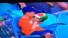 Young Fan Eats Whole Watermelon at Big Bash Cricket Match T20 Cricket, Cricket Match, Sports News, Watermelon, Funny Pictures, Funny Memes, Fan, Youtube, Highlights