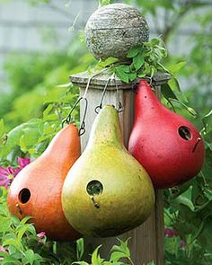 I need to plant gourds this year and make some of these colorful birdhouses! Apple Green, Tangerine And Raspberry Red Natural Gourds Gazebos, Bird Houses Painted, Painted Birdhouses, Modern Birdhouses, Gourds Birdhouse, Painted Gourds, Mabon, Gourd Art, Wild Birds