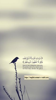 Quran Quotes Love, Quran Quotes Inspirational, Beautiful Islamic Quotes, Allah Quotes, Muslim Quotes, Religious Quotes, Faith Quotes, Wisdom Quotes, Life Quotes
