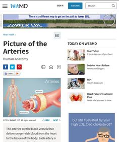 http://www.webmd.com/heart/picture-of-the-arteries#1