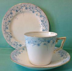 Shelley/Wileman Victoria Shape Daisy Border Print Pattern Tea Cup Trio