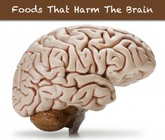 Foods That Harm Your Brain...http://improvedaging.com/foods-that-harm-your-brain/