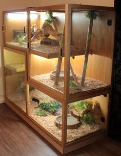 BEARDED DRAGON HABITAT 40