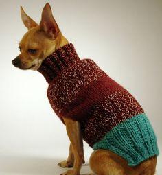 FRANCISCANO  luxury brand la bamba dog sweater
