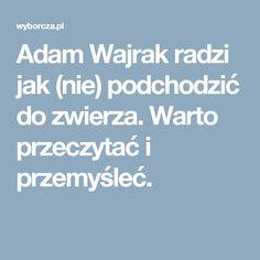 Adam Wajrak radzi jak (nie) podchodzić do zwierza. Warto przeczytać i przemyśleć.