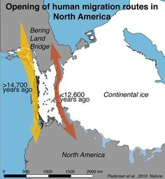 Map outlining the opening of the human migration routes in North America. (Credit: Mikkel Winther Pedersen) // New Study Refutes Theory of How Humans Populated North America Early Humans, First Humans, Map Outline, Historical Maps, Early American, World History, Pre History, Archaeology, Textbook