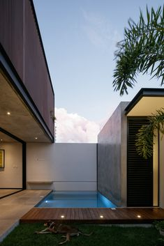 Small Pool: Tips and 65 Ideas with Interesting Photos - BHD Inspiration Round Pool, Rectangular Pool, Swimming Pool Designs, Swimming Pools, Archdaily Mexico, Building A Pool, Small Pools, Beautiful Pools, Heated Pool