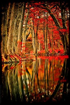 # MOTHER NATURE SCENERY IN FALL