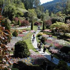 Giardino Butchart - Isola di Vancouver - British Columbia - Canada